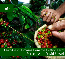 60: Own Cash-Flowing Panama Coffee Farm Parcels with David Sewell