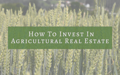 How To Invest In Agricultural Real Estate